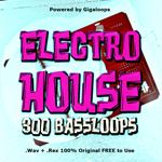 300 Electro Bass Loops