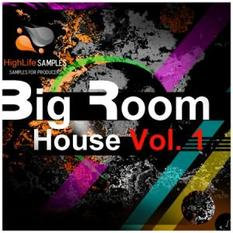 Big Room House Vol.1
