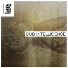 Dub Intelligence by Ipman