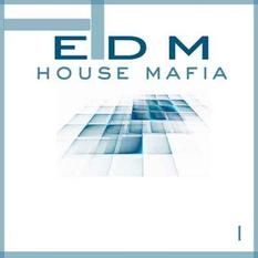 EDM House Mafia Vol.1
