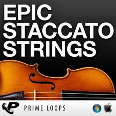 Epic Staccato Strings